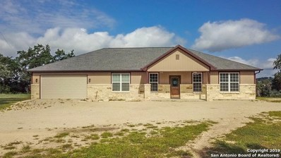98 Red Stag Ct, Spring Branch, TX 78070 - #: 1396624