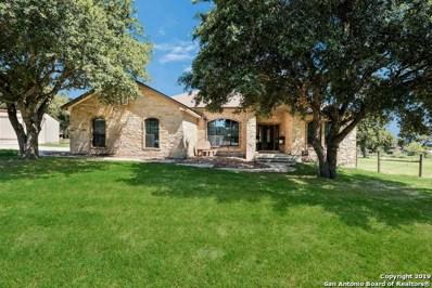1256 Hillside Oaks Dr, La Vernia, TX 78121 - #: 1397833
