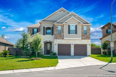 1207 Big Lk, San Antonio, TX 78245 - #: 1397857