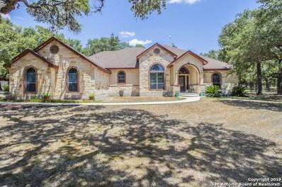 125 Legacy Ranch Dr, La Vernia, TX 78121 - #: 1400011