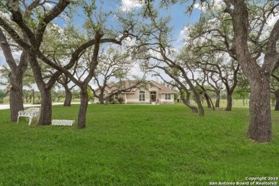 170 Roadrunner Ln, Kerrville, TX 78028 - #: 1401548