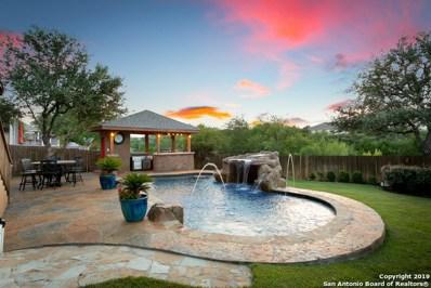 25611 Willard Path, San Antonio, TX 78261 - #: 1402382