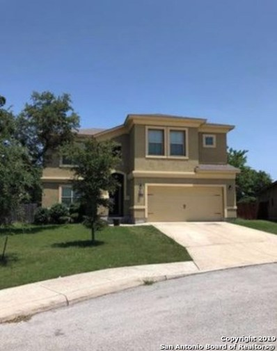 26102 Raven Feather, San Antonio, TX 78260 - #: 1408803