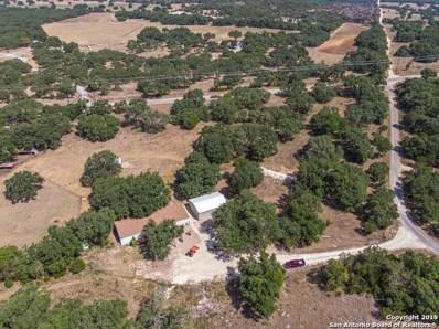 212 Chaparral Trail, Blanco, TX 78606 - #: 1409202