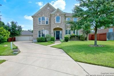 528 Diamond Oak, New Braunfels, TX 78132 - #: 1409233