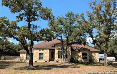 430 Rosewood Dr, La Vernia, TX 78121 - #: 1409241