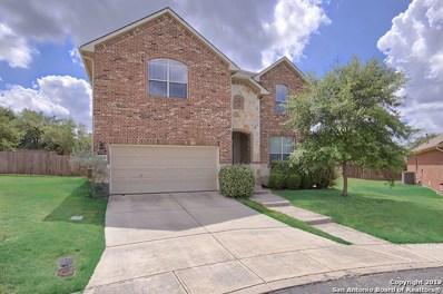 25702 Coleus, San Antonio, TX 78261 - #: 1411210
