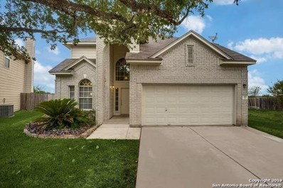 315 Meadow Park, New Braunfels, TX 78130 - #: 1411301