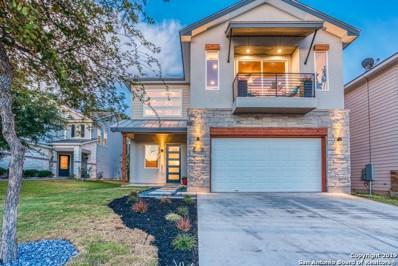 213 Horse Hill, Boerne, TX 78006 - #: 1411380
