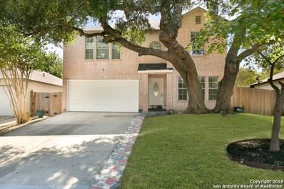 10003 Silver Park, San Antonio, TX 78254 - #: 1414583