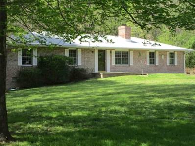 135 Pine Rd, Louisa, VA 23093 - #: 586010