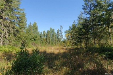 358th St E, Roy, WA 98580 - MLS#: 1020889