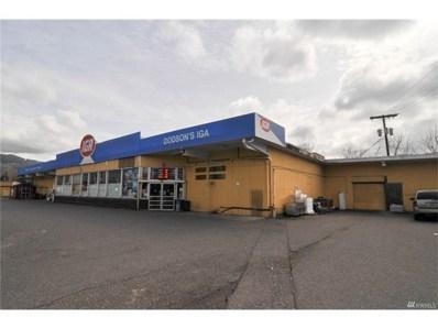 3705 Mt Baker Hwy, Everson, WA 98247 - MLS#: 1098583