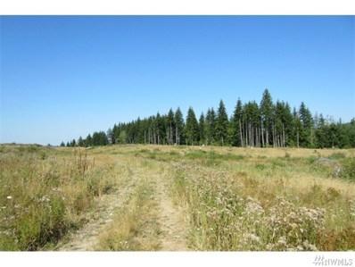 Silver Ridge, Castle Rock, WA 98611 - MLS#: 1142041