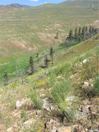 Indian Dan Canyon, Brewster, WA 98812 - MLS#: 1142714