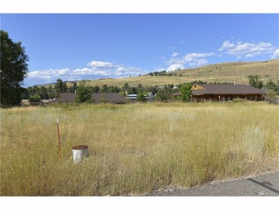 Greenwood Rd, Winthrop, WA 98862 - MLS#: 1153336