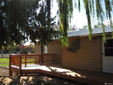 873 Omak-Riverside Eastside Rd, Riverside, WA 98849 - #: 1157546