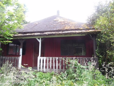 13811 South Prairie Carbon River Rd, Orting, WA 98360 - MLS#: 1166142
