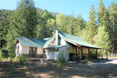 707 Lost River Road, Mazama, WA 98833 - #: 1168547