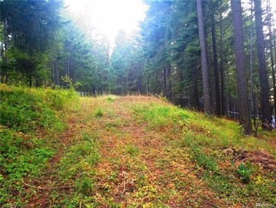 Sky Meadows Dr, Cle Elum, WA 98922 - MLS#: 1180185