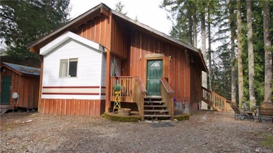 45041 Tolo Trail, Concrete, WA 98237 - MLS#: 1229106