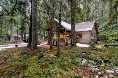 118 Silver Creek USFS Mt Baker-Sno, Greenwater, WA 98022 - MLS#: 1233730