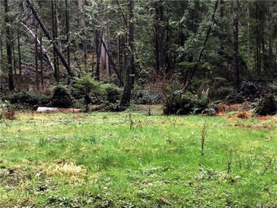 20018 Barlow Pass Trail, Granite Falls, WA 98252 - MLS#: 1244405