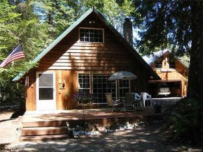 101 Chipmunk Place, Packwood, WA 98361 - MLS#: 1245725