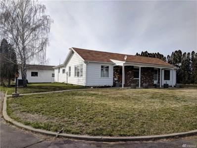 263 Old Riverside Hwy, Omak, WA 98841 - MLS#: 1247365
