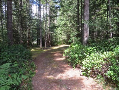 31 N Mt Washington Place, Hoodsport, WA 98548 - MLS#: 1253176