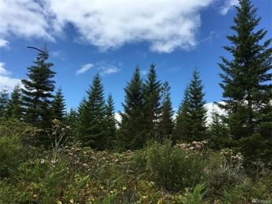 9999 Mt. Walker View Rd, Quilcene, WA 98376 - MLS#: 1256235
