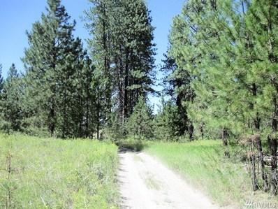 1 Carp Lake Trail, Davenport, WA 99122 - MLS#: 1267947
