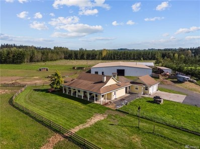 146 Middle Fork Rd, Chehalis, WA 98532 - MLS#: 1268228