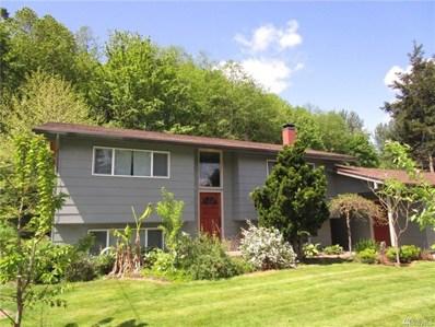 205 Chapman Rd, Castle Rock, WA 98611 - MLS#: 1287304