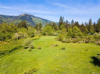 Casey Rd at Mt Baker Hwy, Deming, WA 98244 - MLS#: 1292480