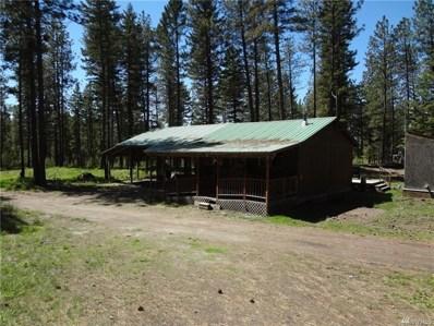 23 Summit Lake Rd, Tonasket, WA 98855 - #: 1293193