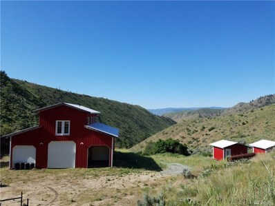 101 Downey Canyon Rd, Chelan, WA 98816 - MLS#: 1295435