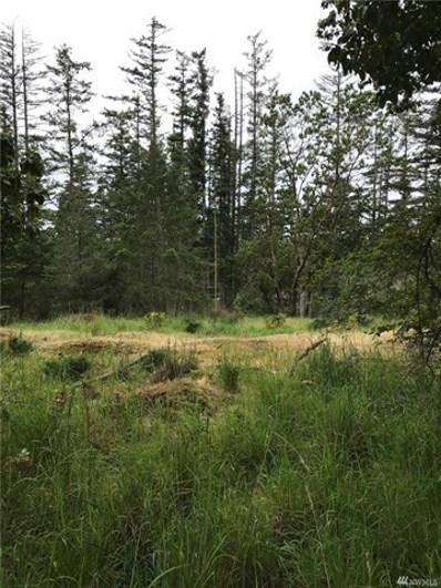 Finnegan Ridge, San Juan Island, WA 98250 - MLS#: 1296612