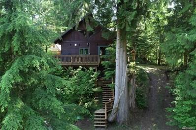 14035 Chimney Lane, Glacier, WA 98244 - MLS#: 1314263