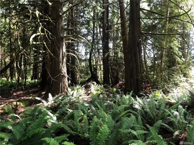 1 Song Dog Hollow, Quilcene, WA 98376 - MLS#: 1320092