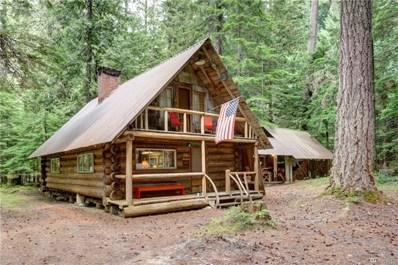 141 Silver Springs - USFS Cabin, Greenwater, WA 98022 - MLS#: 1324543