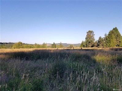 Westside Hwy, Castle Rock, WA 98611 - MLS#: 1327931