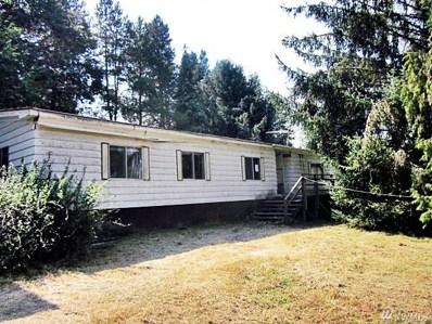 110 Stout Rd, Silverlake, WA 98645 - MLS#: 1346164