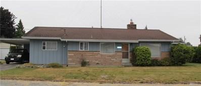 16927 Nilson Rd, Mount Vernon, WA 98273 - MLS#: 1346397