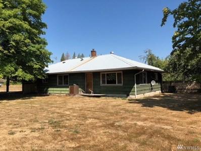 643 Forest Napavine Rd W, Napavine, WA 98532 - MLS#: 1356395