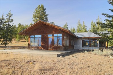99 Flagg Mountain Lp, Mazama, WA 98833 - MLS#: 1367069