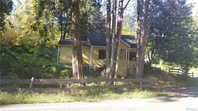 3841 Westside Hwy, Castle Rock, WA 98611 - MLS#: 1383831