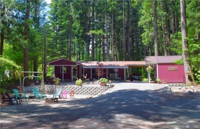 199 Mountain View Dr, Packwood, WA 98361 - MLS#: 1392782