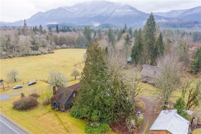 31910 State Route 706 East, Ashford, WA 98304 - MLS#: 1394834
