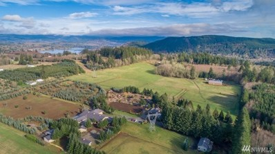 131 Crater View Dr, Silver Creek, WA 98585 - #: 1399653